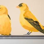 hand painted mural in Good Samaritan Center by Boulder Murals yellow finch