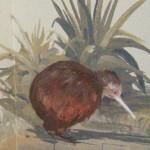 Hand painted mural, New Zealand nursery with a kiwi bird